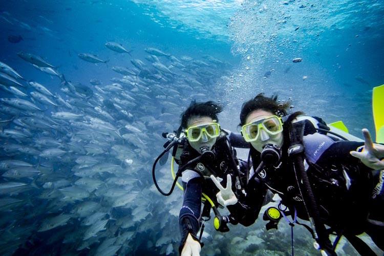 FAQ Guide to Diving In Sipadan and Beyond